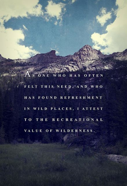Wilderness Quote 3 Picture Quote #1