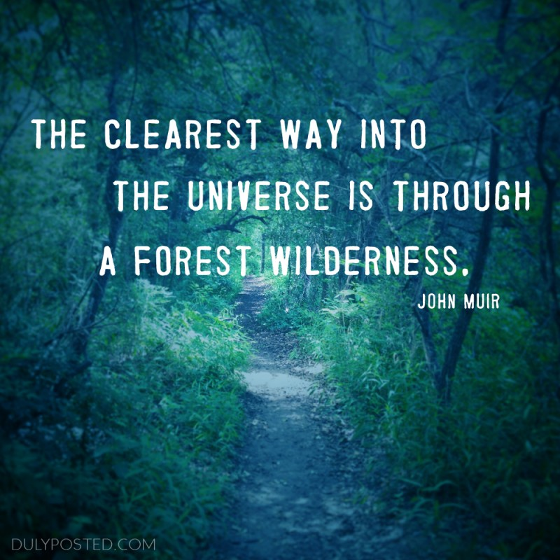 Wilderness Quote 5 Picture Quote #1