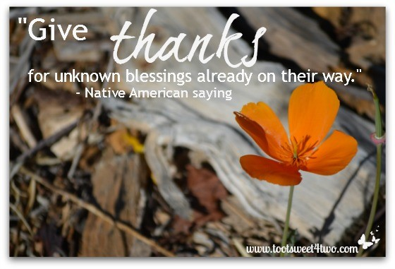 Giving Thanks Quote 4 Picture Quote #1