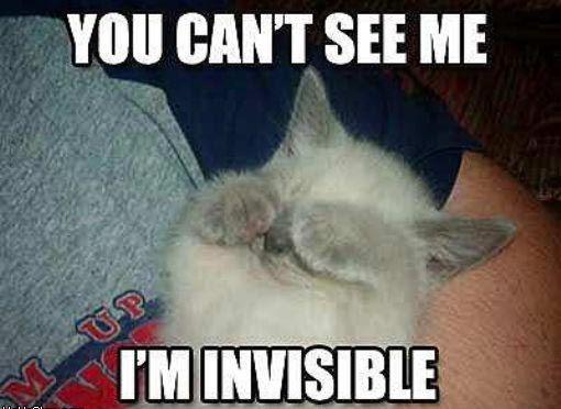 Im Invisible Quote 1 Picture Quote #1