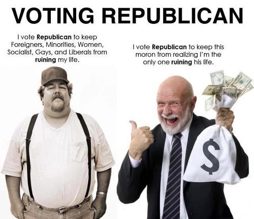 Dumb Conservative Quote 1 Picture Quote #1