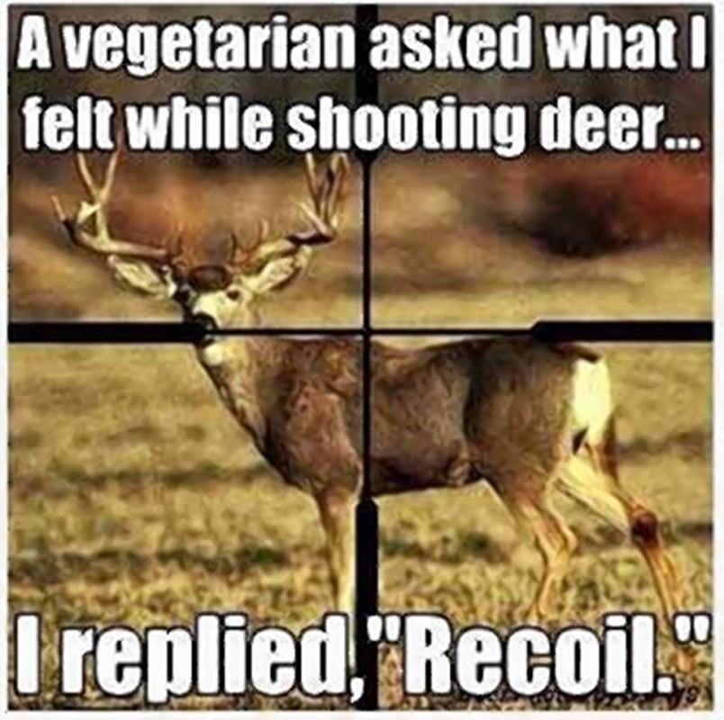 Funny Hunting Quote 1 Picture Quote #1