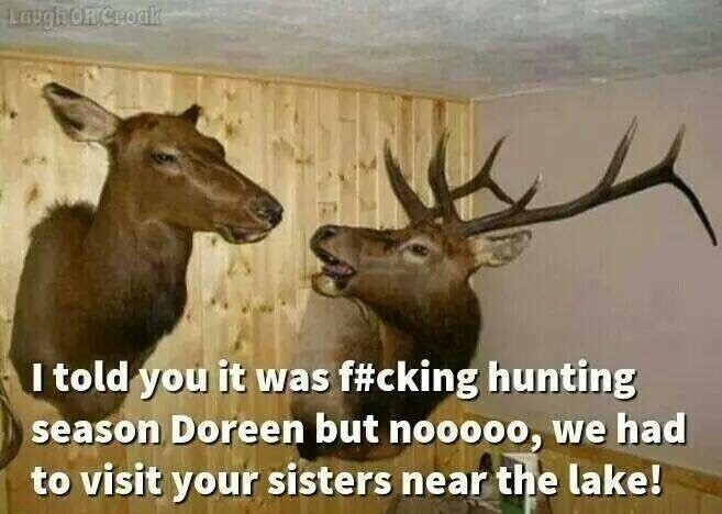 Funny Hunting Quotes & Sayings | Funny Hunting Picture Quotes