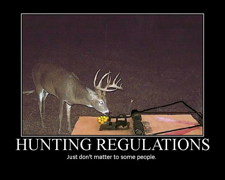 Funny Hunting Quote 17 Picture Quote #1