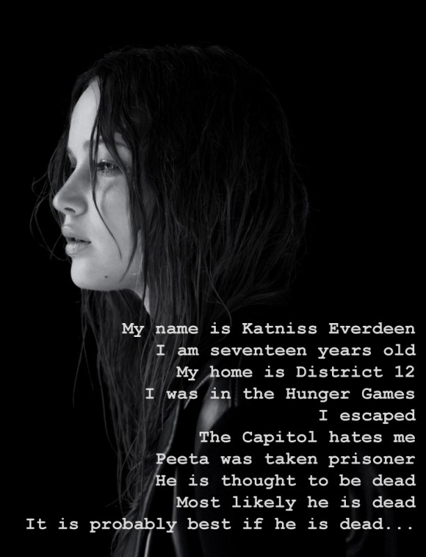 Katniss Everdeen Catching Fire Quote 1 Picture Quote #1