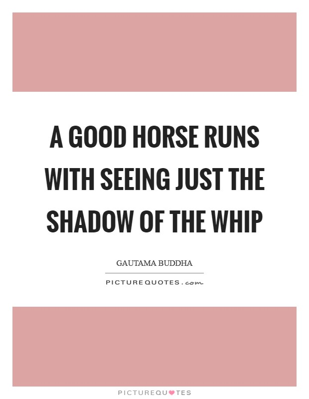 A good horse runs with seeing just the shadow of the whip Picture Quote #1