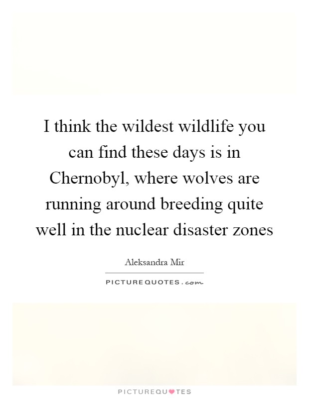 I think the wildest wildlife you can find these days is in Chernobyl, where wolves are running around breeding quite well in the nuclear disaster zones Picture Quote #1