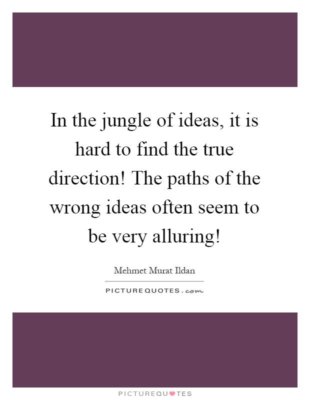 In the jungle of ideas, it is hard to find the true direction! The paths of the wrong ideas often seem to be very alluring! Picture Quote #1