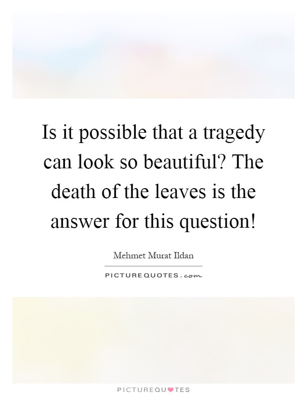 Is it possible that a tragedy can look so beautiful? The death of the leaves is the answer for this question! Picture Quote #1