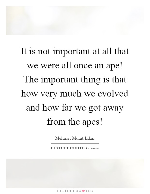 It is not important at all that we were all once an ape! The important thing is that how very much we evolved and how far we got away from the apes! Picture Quote #1