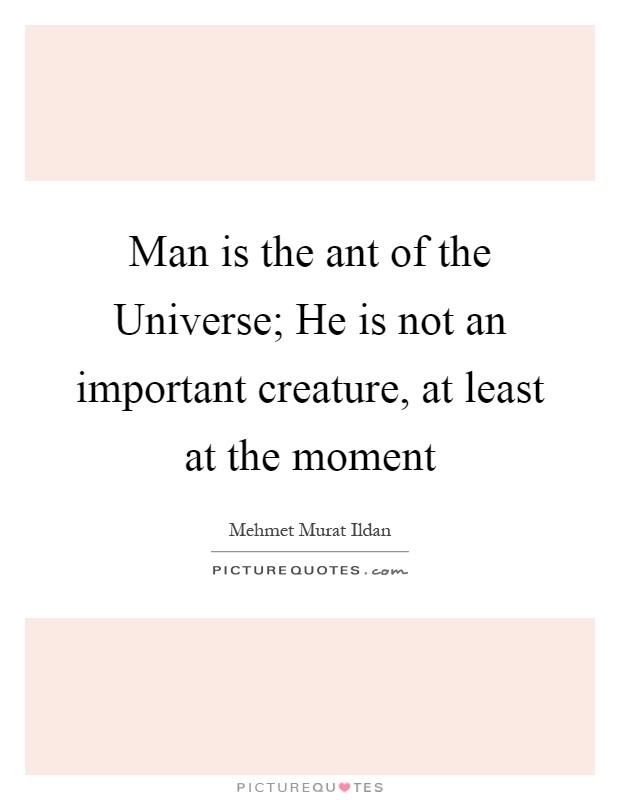 Man is the ant of the Universe; He is not an important creature, at least at the moment Picture Quote #1