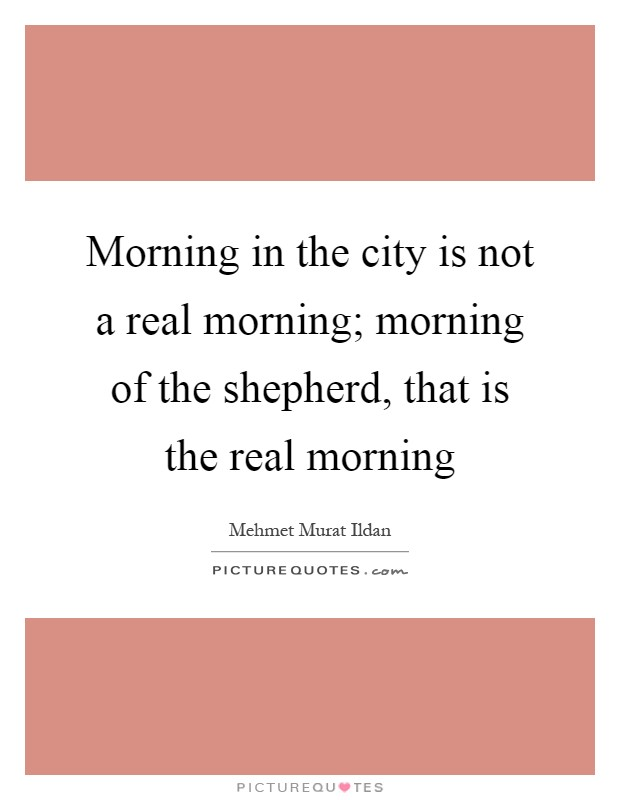 Morning in the city is not a real morning; morning of the shepherd, that is the real morning Picture Quote #1