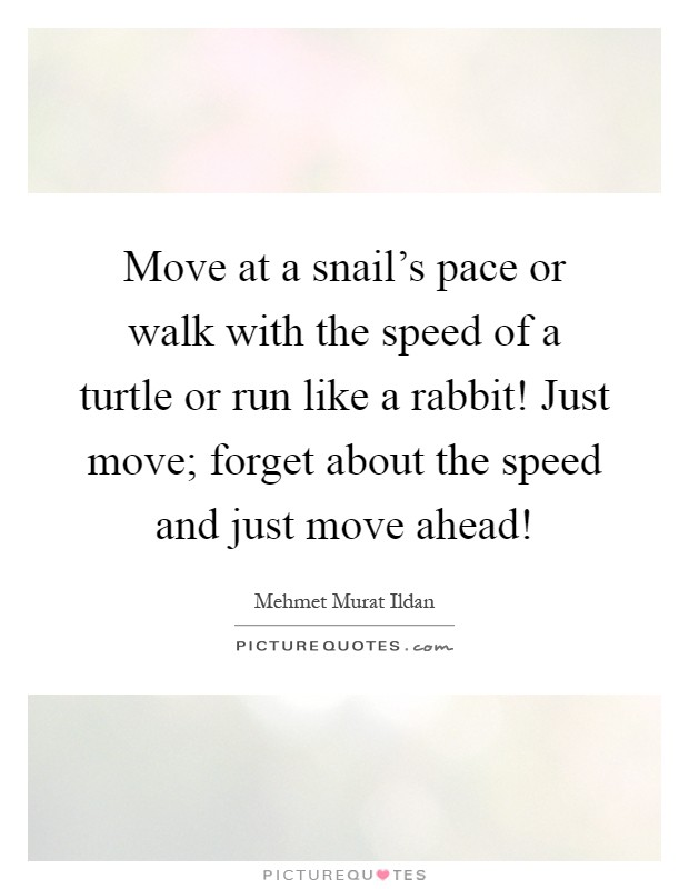Move at a snail's pace or walk with the speed of a turtle or run like a rabbit! Just move; forget about the speed and just move ahead! Picture Quote #1