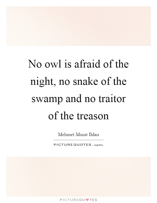 No owl is afraid of the night, no snake of the swamp and no traitor of the treason Picture Quote #1