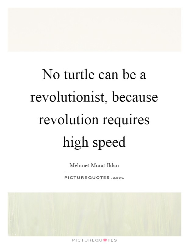 No turtle can be a revolutionist, because revolution requires high speed Picture Quote #1