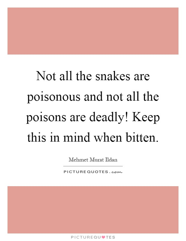 Not all the snakes are poisonous and not all the poisons are deadly! Keep this in mind when bitten Picture Quote #1