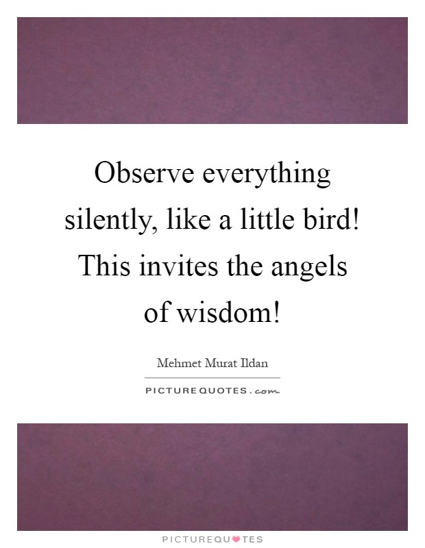 Observe everything silently, like a little bird! This invites the angels of wisdom! Picture Quote #1