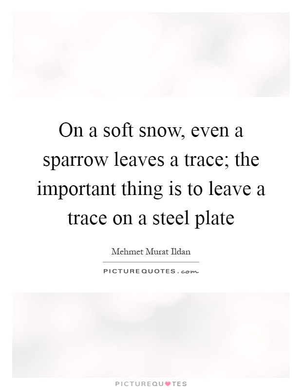 On a soft snow, even a sparrow leaves a trace; the important thing is to leave a trace on a steel plate Picture Quote #1