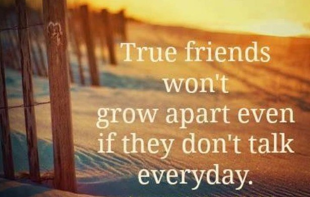 Quote About Distance And Friendship Extraordinary Long Distance Friendship Quote  Quote Number 668225  Picture Quotes