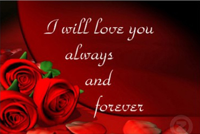 Love You Forever Quote 3 Picture Quote #1