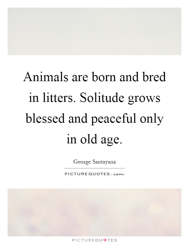 Animals are born and bred in litters. Solitude grows blessed and peaceful only in old age Picture Quote #1