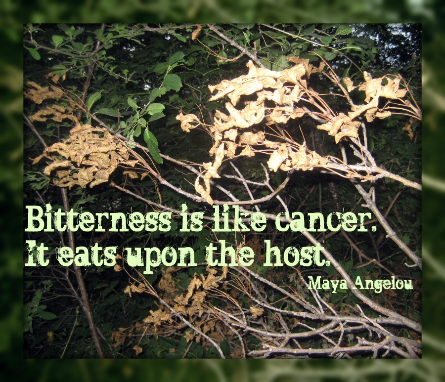 Bitterness Quote 4 Picture Quote #1