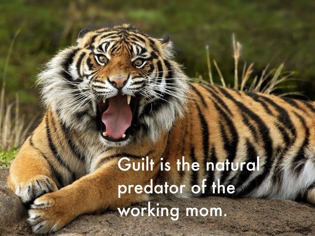 Guilt Quote 1 Picture Quote #1