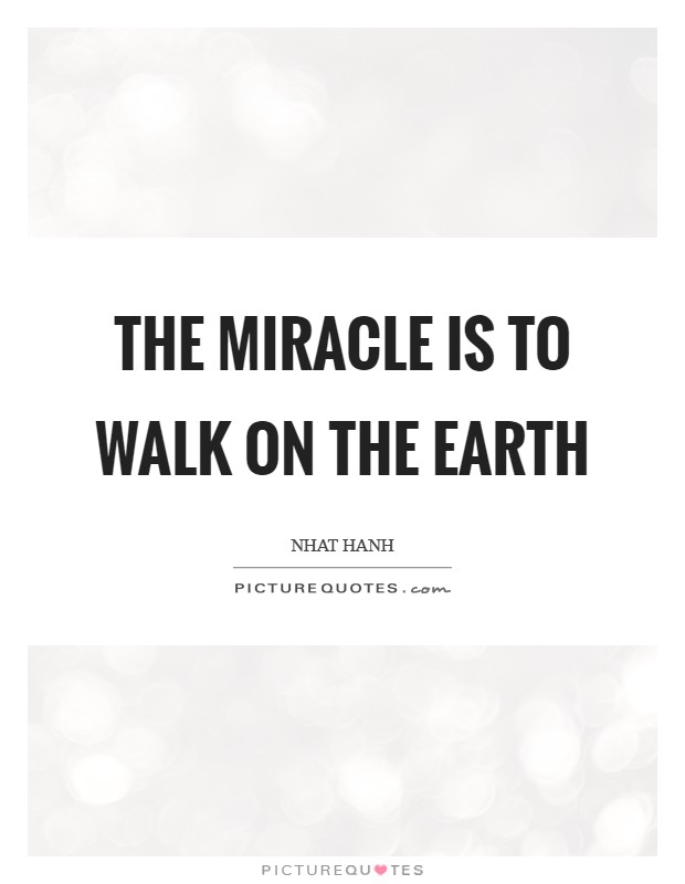 The miracle is to walk on the earth Picture Quote #1