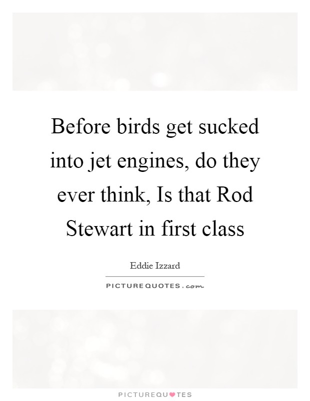 Before birds get sucked into jet engines, do they ever think, Is that Rod Stewart in first class Picture Quote #1