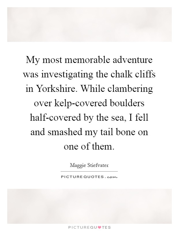 My most memorable adventure was investigating the chalk cliffs in Yorkshire. While clambering over kelp-covered boulders half-covered by the sea, I fell and smashed my tail bone on one of them Picture Quote #1