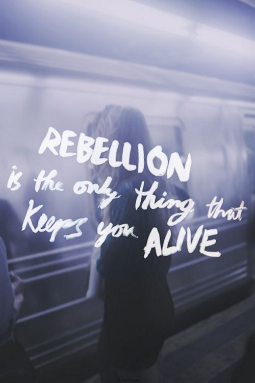 Rebellion Quote 6 Picture Quote #1