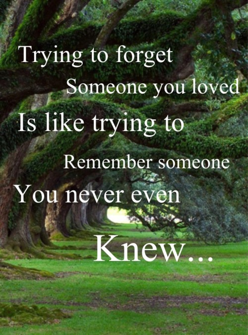 How Can I Forget You Quote 1 Picture Quote #1