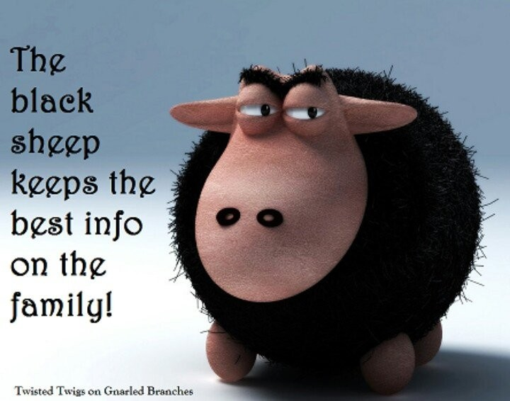 Black Sheep Quote 2 Picture Quote #1