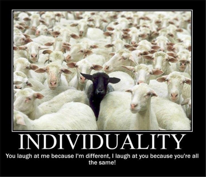 Black Sheep Movie Quotes