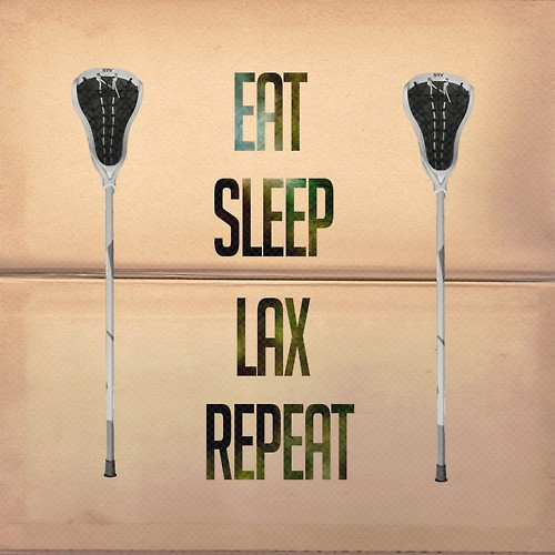 Lacrosse Quotes Fascinating Lacrosse Quote  Quote Number 677575  Picture Quotes