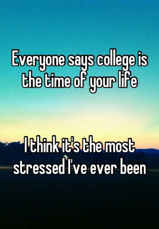 Quotes About College Life Stunning College Life Quote  Quote Number 677945  Picture Quotes