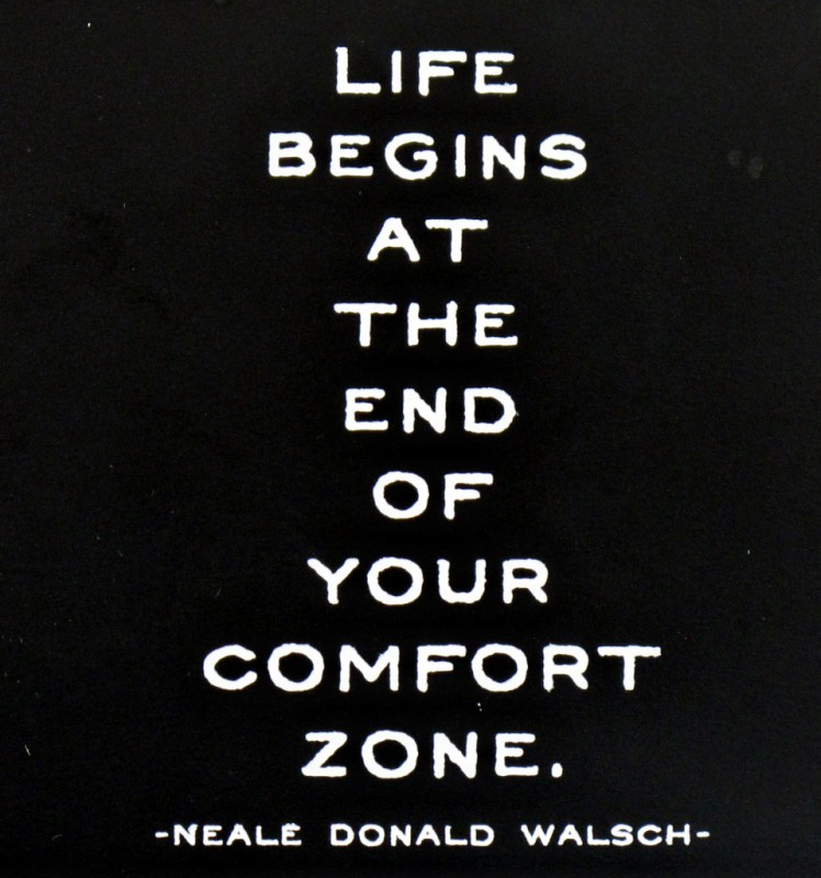 Comfort Zone Quote 1 Picture Quote #1