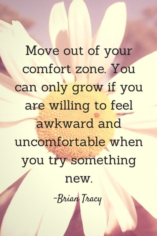 Comfort Zone Quote 6 Picture Quote #1