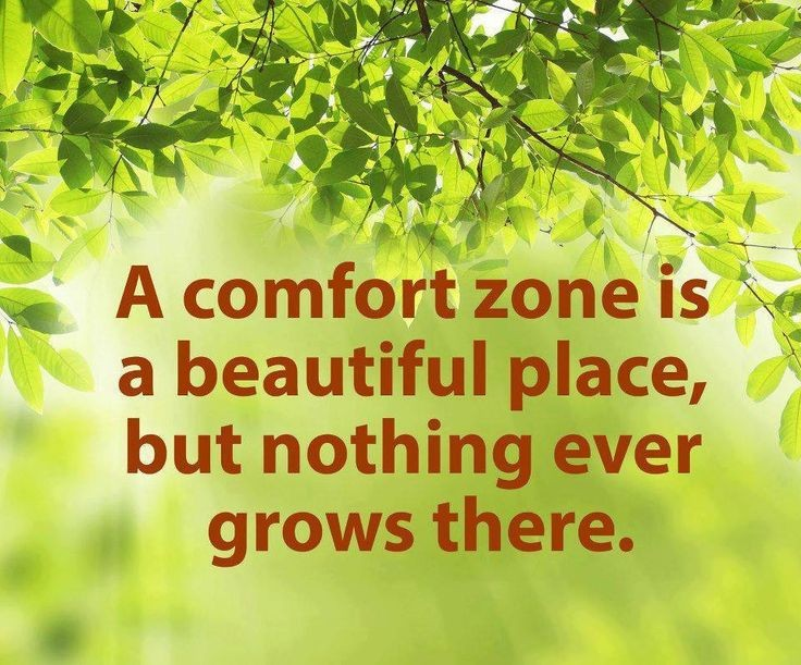 Outside Your Comfort Zone Quote 1 Picture Quote #1