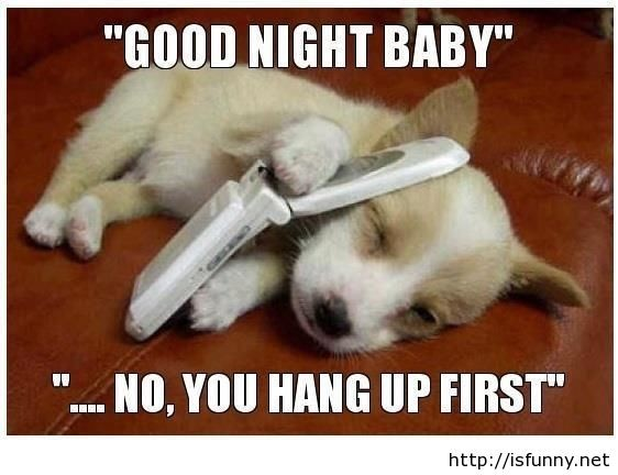 Funny Goodnight Quote | Quote Number 678485 | Picture Quotes