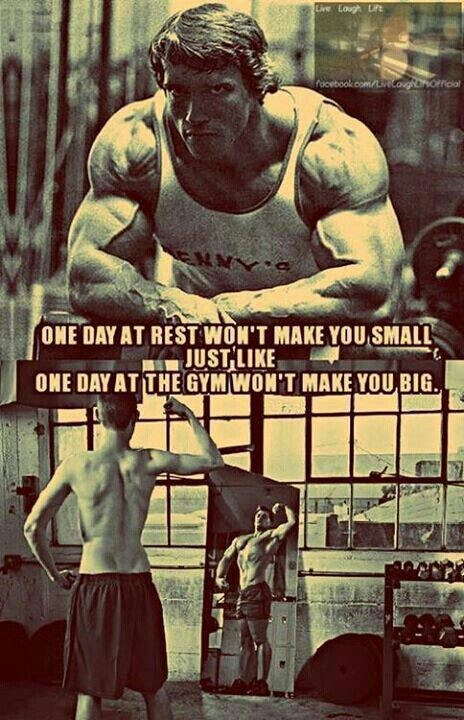 Funny Fitness Quote 12 Picture Quote #1