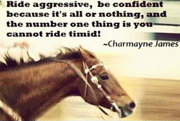 Barrel Racing Quotes Cool Charmayne James Barrel Racing Quote  Quote Number 678855 .