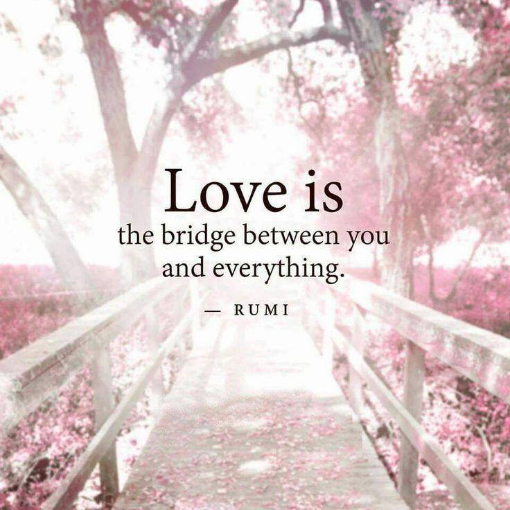Love is a bridge between you and everything Picture Quote #1