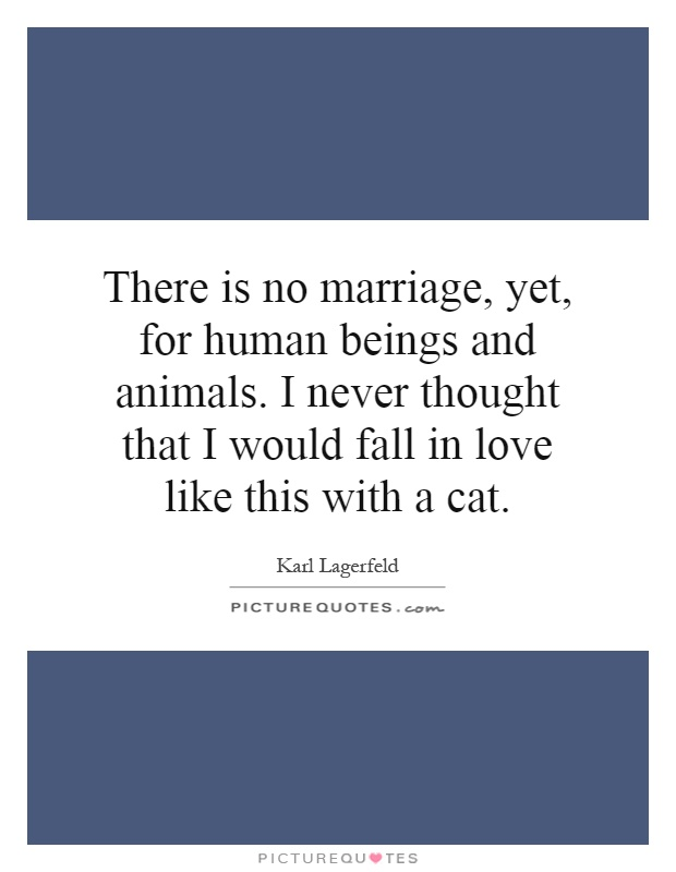 There is no marriage, yet, for human beings and animals. I never thought that I would fall in love like this with a cat Picture Quote #1