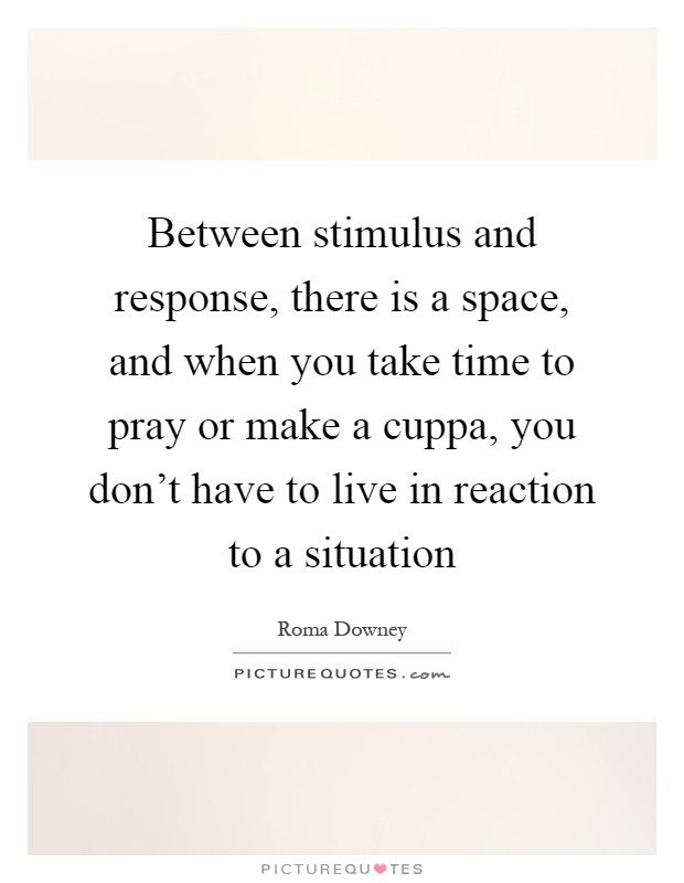 Between stimulus and response, there is a space, and when you take time to pray or make a cuppa, you don't have to live in reaction to a situation Picture Quote #1