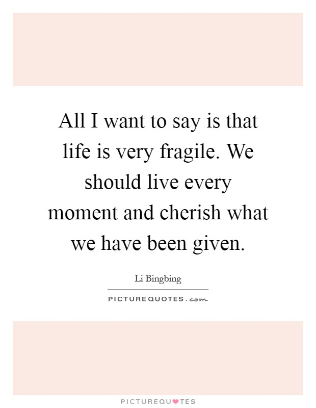 All I want to say is that life is very fragile. We should live every moment and cherish what we have been given Picture Quote #1
