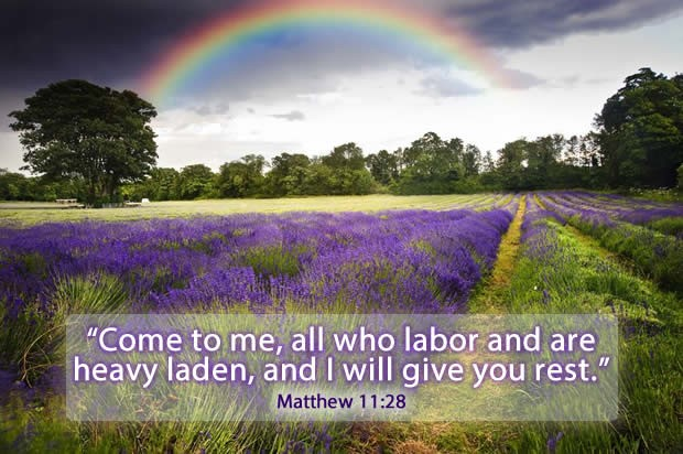 Kingdom Of Heaven Quote 9 Picture Quote #1