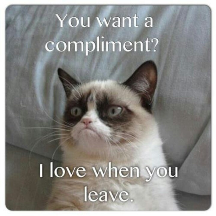Funny Compliment Quote 3 Picture Quote #1