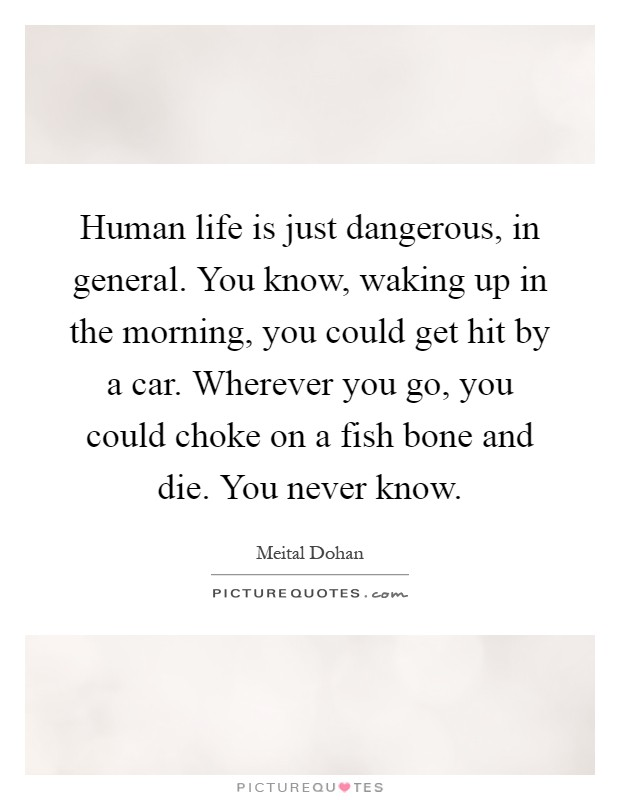 Human life is just dangerous, in general. You know, waking up in the morning, you could get hit by a car. Wherever you go, you could choke on a fish bone and die. You never know Picture Quote #1