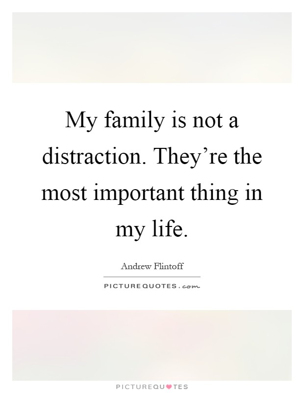 the most important things in my life The most important things in my life are :- 1 the values i learned from my parents since my childhood 2 my mom as she was my inspiration and inspires me now as well,my lifeline for my lifetime.
